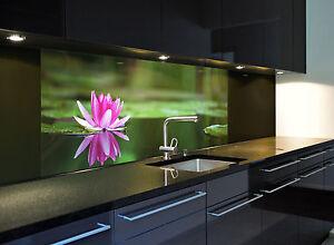 glasbild k chenr ckwand spritzschutz seerose1 in On glasbild küchenrückwand spritzschutz