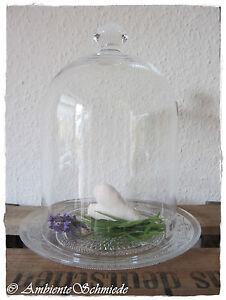gr glas glocke cloche glashaube mit relief untersetzer glas untersetzer deko ebay. Black Bedroom Furniture Sets. Home Design Ideas