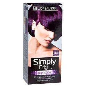 Details about HAIR DYE PURPLE PASSION GREAT PERMANENT HAIR COLOUR 100     Dark Purple Hair Dye Brands