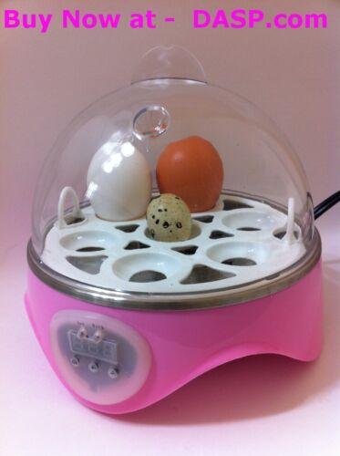 Hatching Eggs Digital Mini Incubator... 2012 newest model.....PINK in Pet Supplies, Bird Supplies, Incubators | eBay