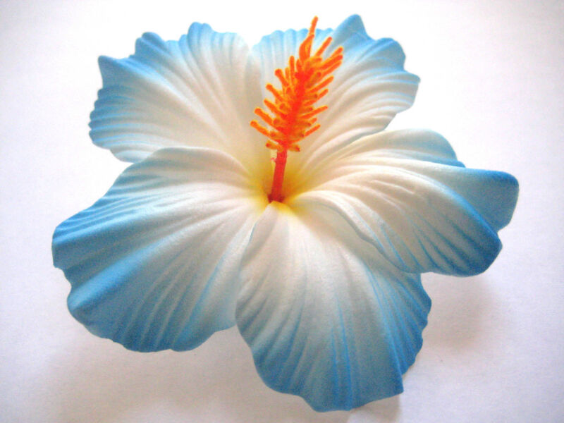Hawaii Bridal Wedding Party Life Like Hibiscus Flower Hair Clip