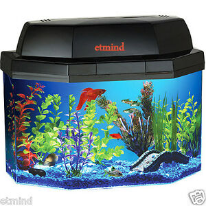 Gallon Fish Tank on Hawkeye 5 Gallon Fish Tank Aquarium Kit Semi Hexagonal Hood Filter