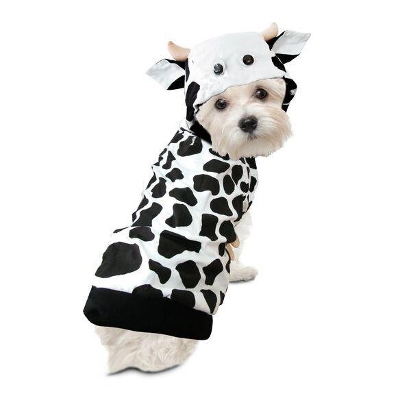 Dog Cow Costume Goldenacresdogs