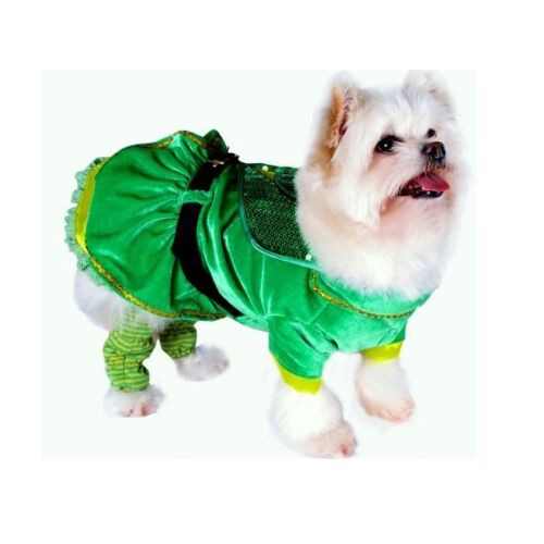 High Quality Dog Costume Leprechaun Girl Costumes