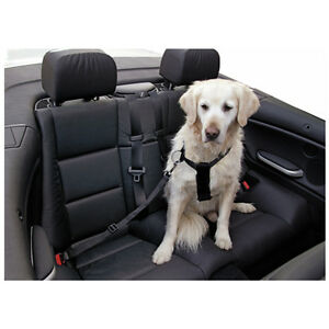 Hunde-Sicherheitsgurt-Auto-Sicherheitsgurt-fuer-Hunde-Anschnallgurt-70-90-cm