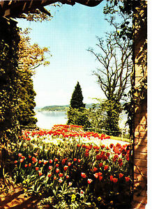 Insel-Mainau-im-Bodensee-1961-gelaufene-AK