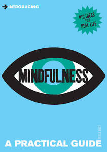 Introducing Mindfulness: A Practical Gui...