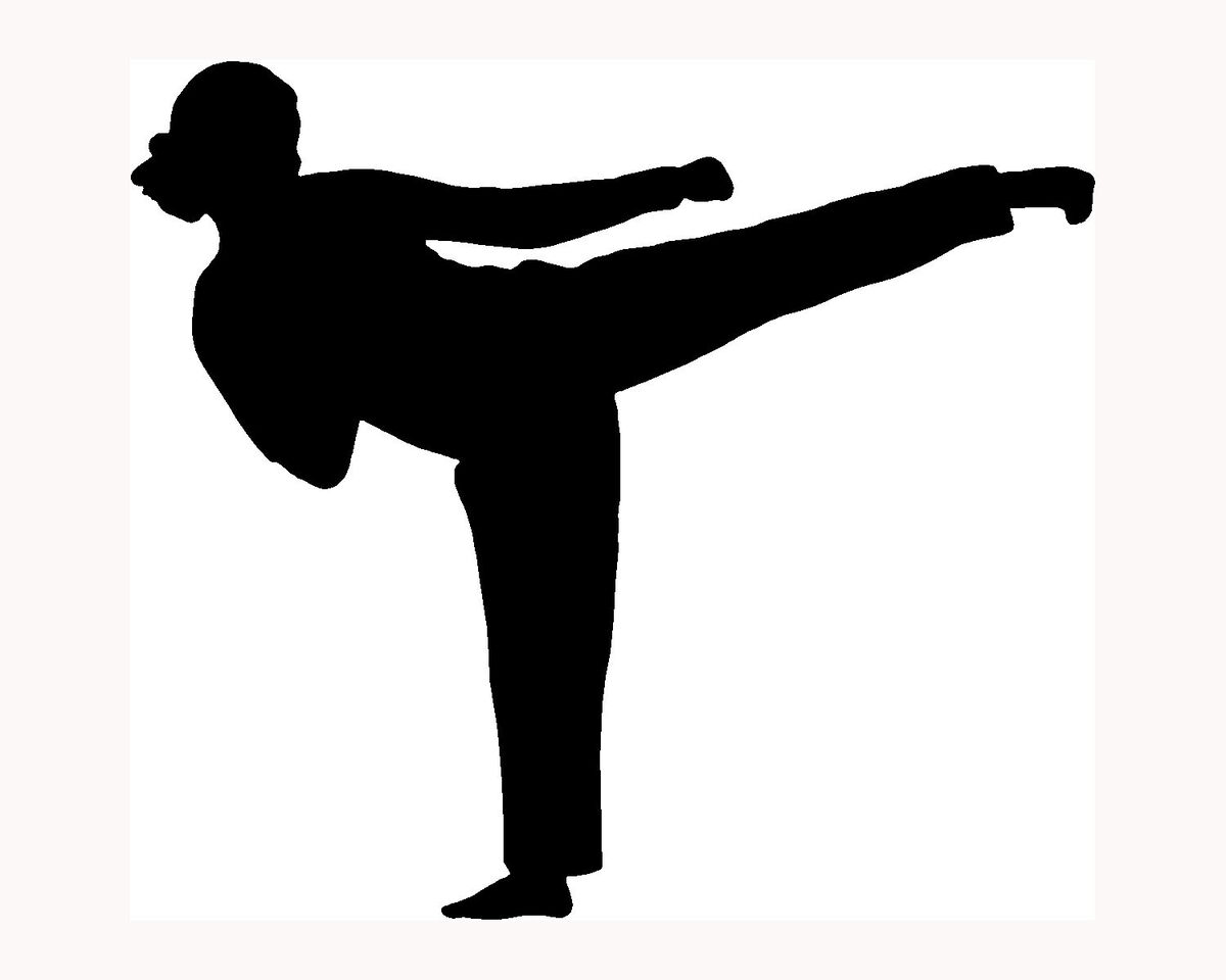 Karate Girl Sticker Car Window Decal Fight Woman Kick Neat Gift Vinyl
