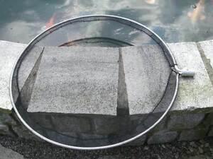 Koi netz koi kescher kopf 80cm ohne stiel ersatz ebay for Koi 80 cm te koop