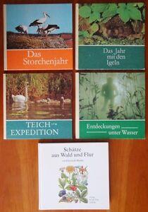 Konvolut-Buecher-Storch-Igel-Teich-Unterwasserwelt-Wald-und-Flur