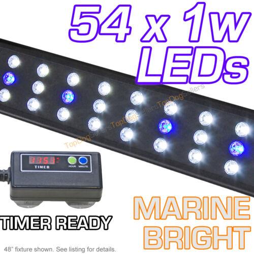 "LED 48"" 3300 Timer Aquarium Light Marine Bright FOWLR Cichlid 54x 1 Watt 120 cm in Pet Supplies, Aquarium & Fish, Lighting | eBay"