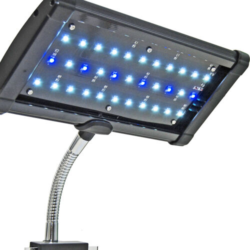 LED Aquarium Light Freshwater Bright Mini Nano Pico Lunar Tropical Fish Clamp in Pet Supplies, Aquarium & Fish, Lighting | eBay