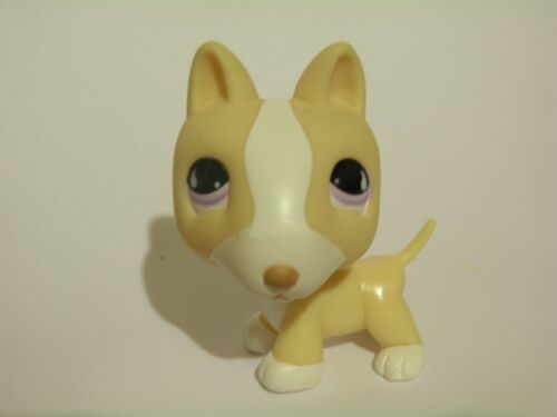 LPS Pet Shop #860 Tan & White Bull Terrier Puppy Dog w/ Purple Eyes in Toys & Hobbies, Preschool Toys & Pretend Play, Littlest Pet Shop | eBay