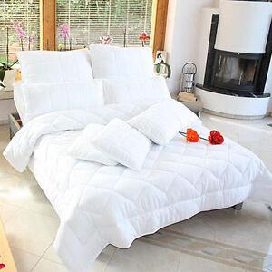 luxus 4 jahreszeiten bettdecke steppbett mirocfaser bettw sche mit kissen neu ebay. Black Bedroom Furniture Sets. Home Design Ideas