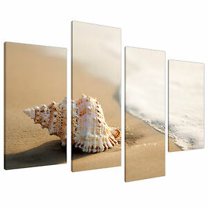 Http Www Ebay Co Uk Itm Large Beige Bathroom Canvas Wall Art Pictures Shells Xl Sea Print 4146 251158485224