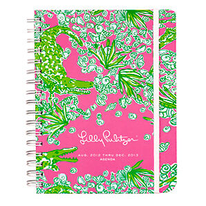 Lilly Pulitzer Journal Large Agenda Day Planner See You Later Diary 2013 17mths in Books, Accessories, Blank Diaries & Journals | eBay