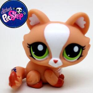 Littlest Pet Shop LPS Persian Cat Toy Animal Figures ... Tabby Persian