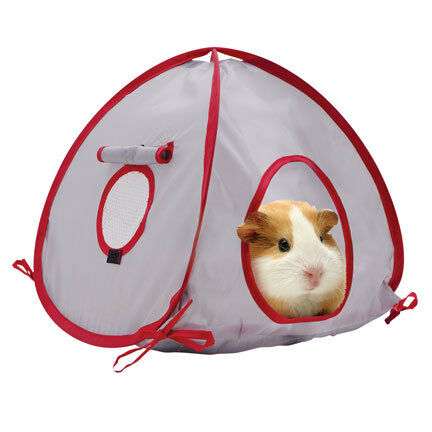 Living World Item 61386 Ferret Guinea Pig Cage Camp Tent - ideal for Guinea Pigs in Pet Supplies, Small Animal Supplies | eBay
