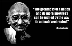 Mahatma Gandhi Quotes About Animals