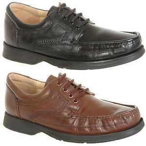 mens softie leather lace up shoes in black or brown size 6