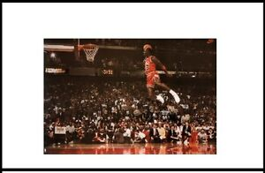 the life and achievements of michael jordan an american retired professional basketball player and b Former bearcat legend oscar robertson will receive the nba lifetime achievement award on  michael jordan,  in both college and professional basketball,.