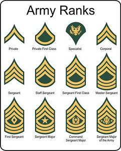 Military Insignia on Military U S Army Rank Insignia Metal Sign   Ebay