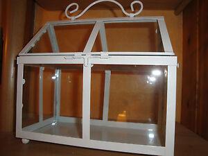 mini gew chshaus kakteenhaus glashaus deko kr uter topf kakteen pflanzschale neu. Black Bedroom Furniture Sets. Home Design Ideas