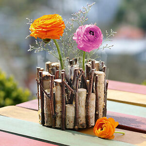 mini v schen birkenwald kleine vase glasvasen. Black Bedroom Furniture Sets. Home Design Ideas