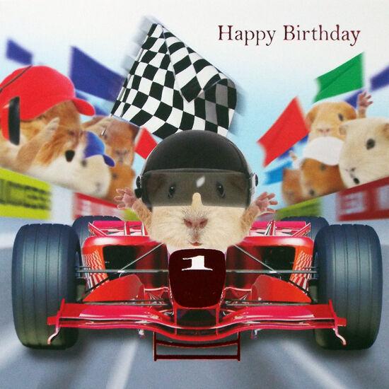 Motor Racing Car Birthday Card Finish Line Funny Guinea ...