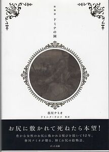 NAMIO-HARUKAWA-Picture-tale-Garden-of-domina-japan-book-Free-Shipping