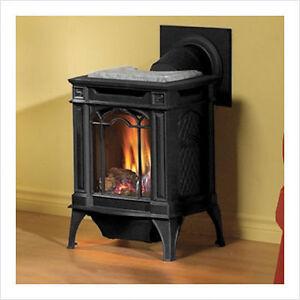 Gas Fireplace GDS20 Arlington Stove Small Cast Iron Direct Vent | eBay