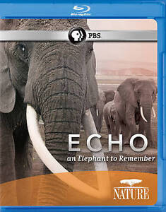 Nature: Echo - An Elephant to Remember (...
