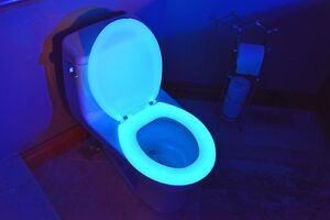 Night Glow Seats Glow In The Dark Toilet Seat Blue Regular New In Box EBay