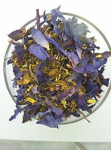 Nymphaea-Caeruela-Blauer-Lotus-20-Gramm-Raeucherwerk