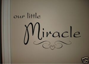 OUR LITTLE MIRACLE Vinyl Wall Quote Decal Baby Nursery in Baby, Nursery Decor, Wall Decor | eBay