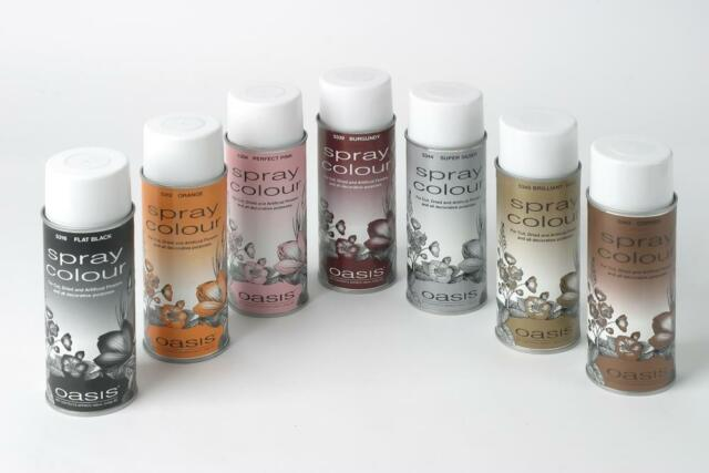 Super Silver Oasis Spray Paint