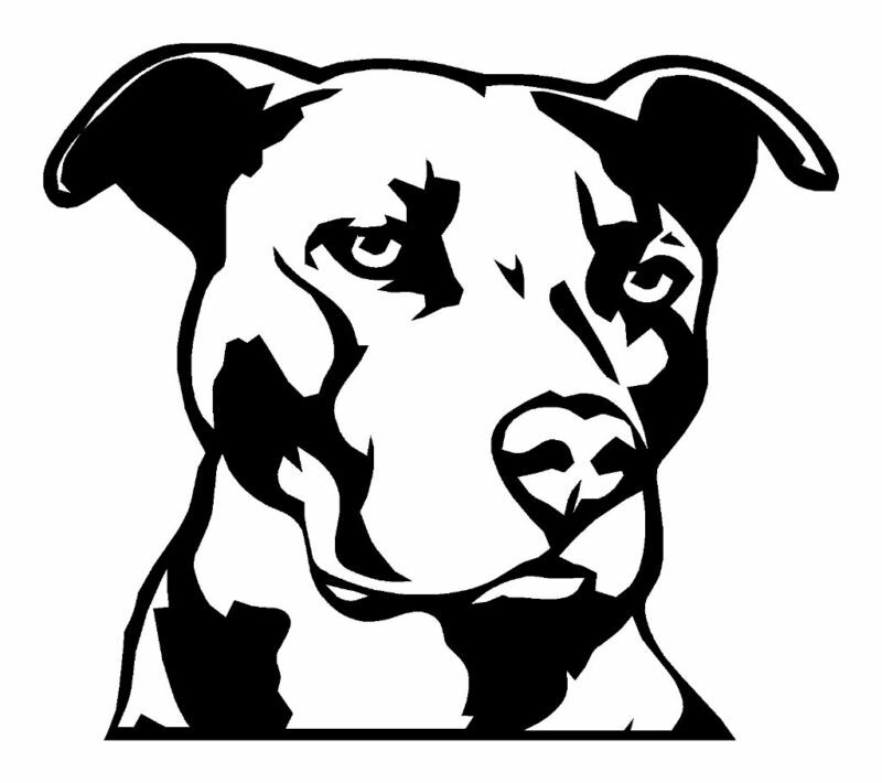 Pitbull Decal Pit Bull Sticker Dog Jdm 4x4 Mma 10 Big On Popscreen