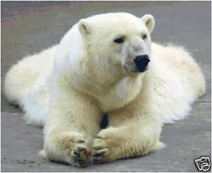 arctic animal counted cross stitch pattern