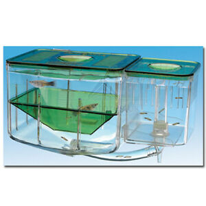 Q10 penn plax aquarium fish tank live breeding trap for Fish breeding tank