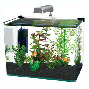 Radius 5 gallon corner glass aquarium fish tank kit w led for 5 gallon glass fish tank