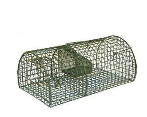 rattenfalle lebendfalle maus ratte falle alive multirat ebay. Black Bedroom Furniture Sets. Home Design Ideas