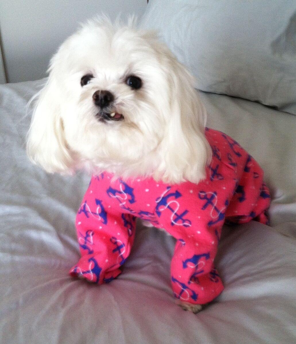 Really Cute Small Dog Pajamas Hot Pink w Anchor Print Dog Clothes USA New