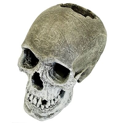 Replica Human Skull Cave 358 Aquarium Ornament Fish Tank Decoration