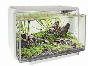 SF-HOME-25-Aquarium-weiss-Nanobecken