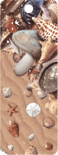 SHE SELLS SEA SHELLS 3D MOTION BOOKMARK MADE IN USA in Books, Accessories, Bookmarks | eBay