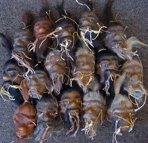 Tsansa Jenglot Amerika Selatan - infolabel.blogspot.com