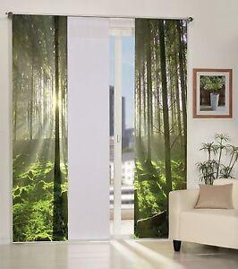 schiebegardine blickdicht foto sonnenstrahl im wald uni wei ebay. Black Bedroom Furniture Sets. Home Design Ideas