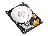 Seagate Momentus 5400.3 80 GB,Internal,5...