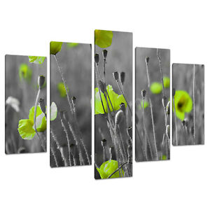 Set Five Cheap Large Lime Green Canvas Art Wall Pictures