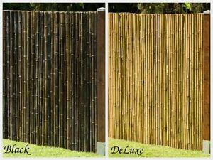 sichtschutz aus bambus gartenzaun windschutz zaun deluxe black in 8 gr en ebay. Black Bedroom Furniture Sets. Home Design Ideas